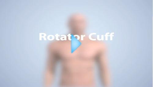 rotator cuff video